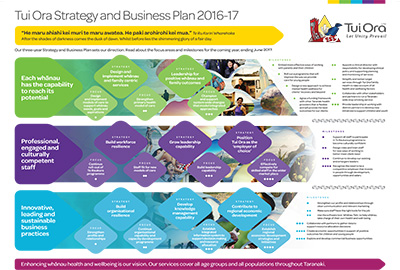 Tui Ora Strategy and Business Plan 2016-2017