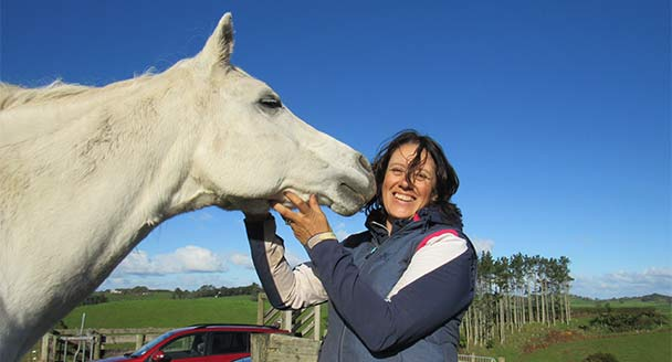 Horses helping humans to heal